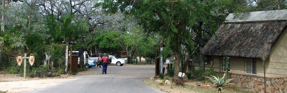 Report On Pretoriuskop Bushveld Camp In The Kruger