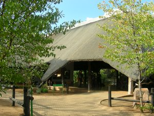 Report On Shingwedzi Rest Camp In The Kruger National Park