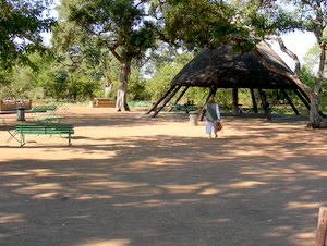 Report On Tsendze Rustic Camp In The Kruger National Park